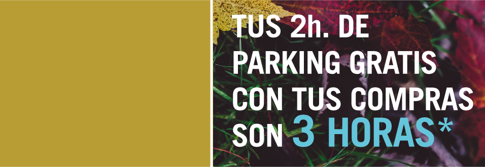 3* HORAS DE PARKING GRATIS